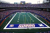 Giants Stadium title